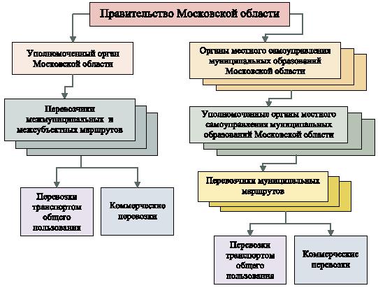Структура органов